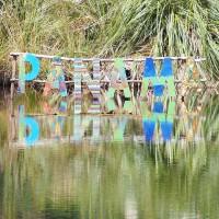 A Festival Called Panama 2015